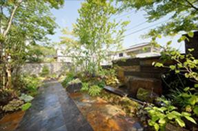 開放的な広い庭。空に向かって力強く伸びる木々。敷石に柔らかな木漏れ日が落ちる