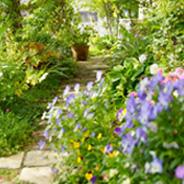 洋風の石畳に、色とりどりの花が競うように咲き乱れる